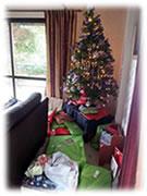ニュージーランドの風に吹かれて 「ニュージーランドのクリスマス」 2014.1.14(1)